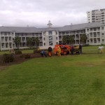 Instant Lawn Services