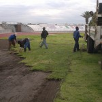 Lawn Projects